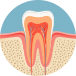 root canal inside for Family Dentistry